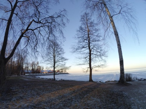 Winter time Petergof - Gulf of Finland