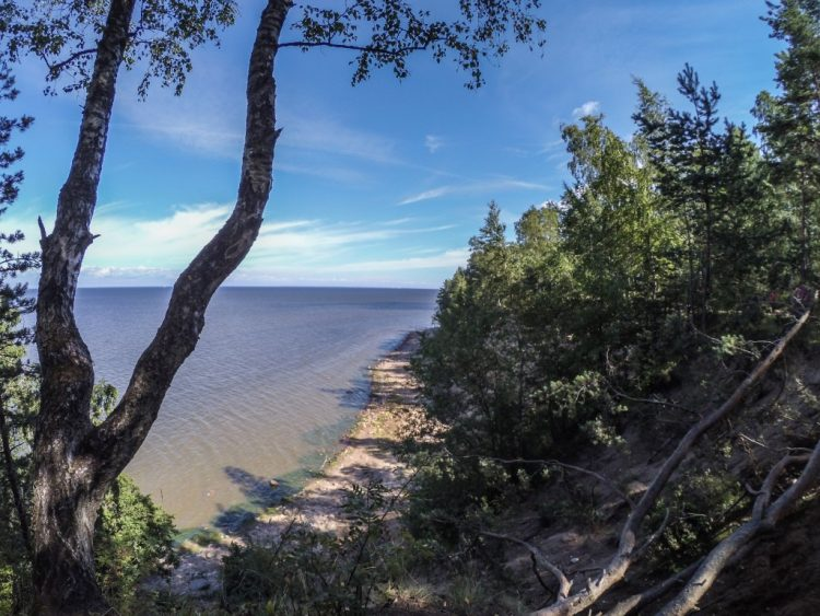 The shore of the Gulf of Finland near the Krasnaya Gorka